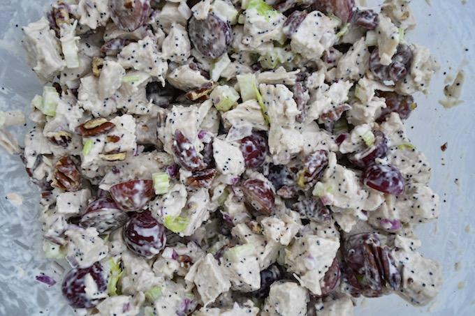 Closeup of Sonoma Chicken Salad.