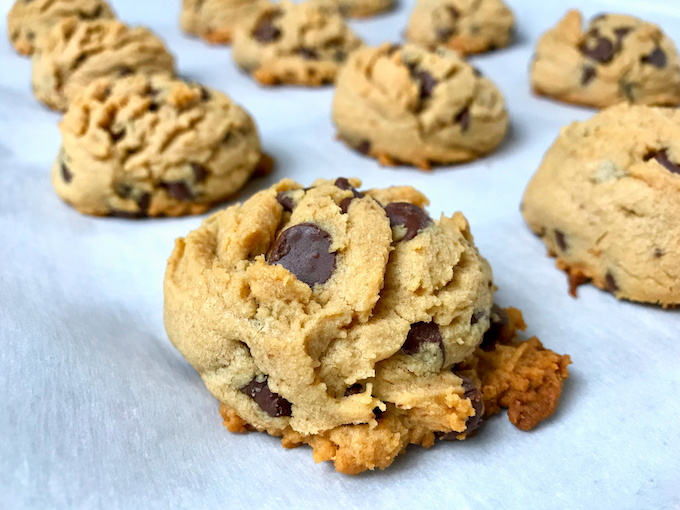 A closeup of a peanut butter chocolate chip cookie.