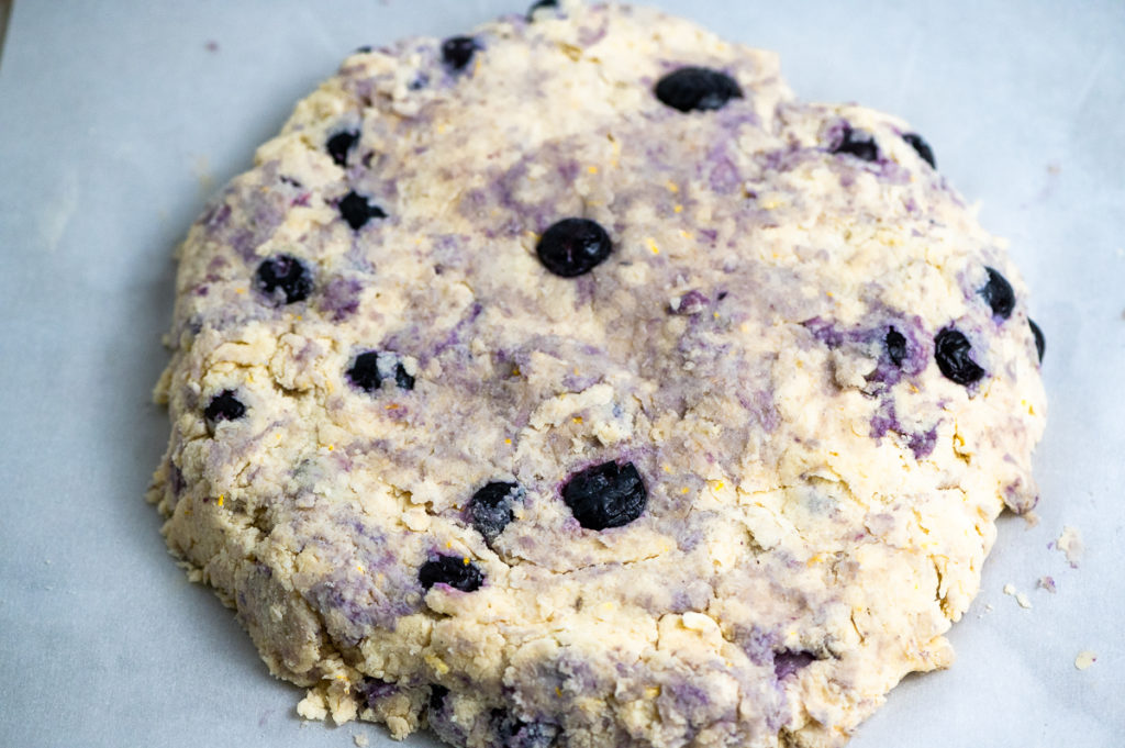 Blueberry cream scone dough patted in round ready to be divided.