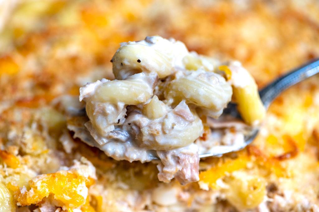 A close up of a spoonful of creamy tuna casserole.